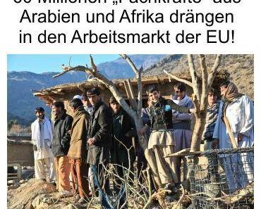 60 Millionen Menschen aus Nahost und Nordafrika drängen in die Arbeitsmärkte, warten auf die Einreise zur EU