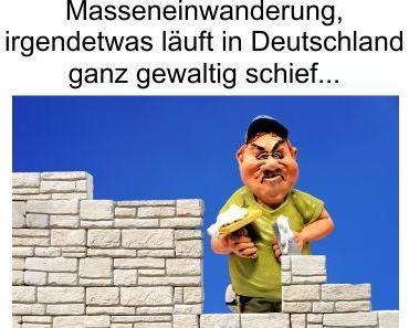 40 Prozent trauen Merkel immer noch die Lösung des Migrationsproblems zu. Handwerkermangel trotz Masseneinwanderung, was läuft da schief?