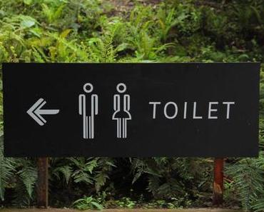 Schon mal den Blick in die Toilette gewagt? Tipps zur Stuhlanalyse
