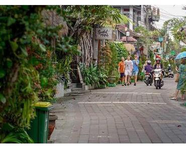 Indo-Quickie Teil 1: Ubud auf Bali