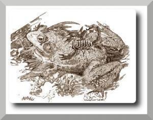 Der Skorpion und der Frosch