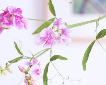 Friday-Flowerday 31/18