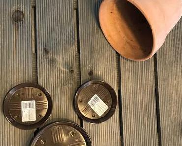 DIY Vogelhaus – Das etwas andere Vogelparadies