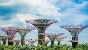 Tipps Singapur Gardens Kindern