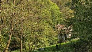 Deutschlands schönster Wanderweg (Touren) 2018 Traumschleife Masdascher Burgherrenweg