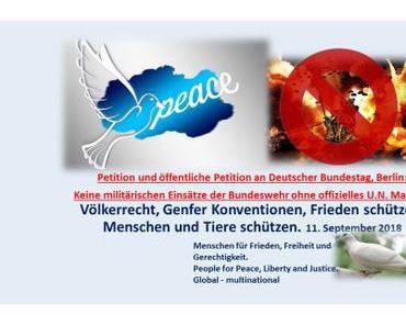 Petition: Keine militärischen Bundeswehr-Einsätze ohne offizielles U.N. Mandat