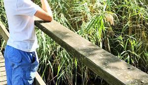 Wasser Land aufeinander treffen: Familienausflug Naturzentrum Thurauen