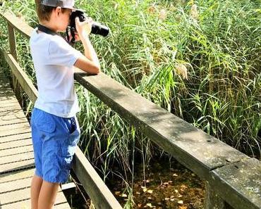 Wo Wasser und Land aufeinander treffen: Ein Familienausflug ins Naturzentrum Thurauen