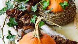 Herbst genauso meine Energie ganz viel Kürbis-Dekoideen euch!