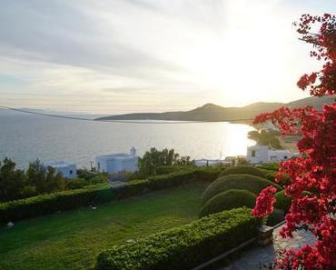 TINOS FOOD PATH – 3 Tage auf Tinos - + + + Griechenland neu entdecken ++ Food Path-Festival ++ Land und Leute + + +