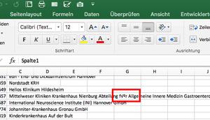Excel Import falschen Umlauten Minuten fixen