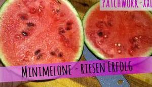 Unsere erste eigene Wassermelone