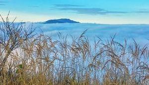Bild Woche: Sauwand Blick über Nebelmeer