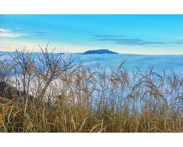 Bild der Woche: Sauwand – Blick über Nebelmeer