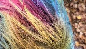 Farbenmeer Kopf