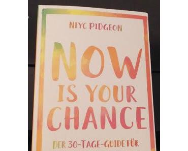 gelesen: Now is your chance
