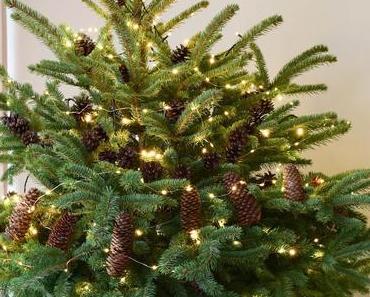 Natürliche Deko für den Weihnachtsbaum: Weihnachtsbaumschmuck basteln!