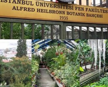 Botanischer Garten Istanbul