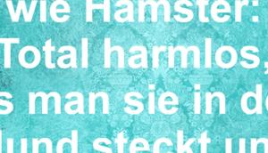 Zigaretten sind Hamster: Total harmlos, bis...