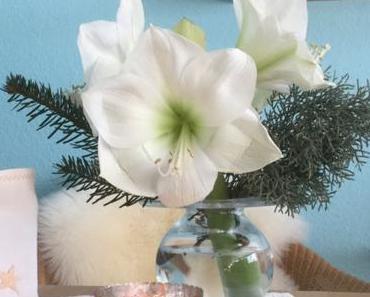 Friday- Flowerday – oder – Ja, ist denn noch Weihnachten?