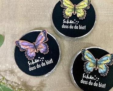 Schmetterllingsgoodie