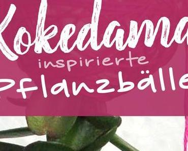 Kokedama-inspirierte Pflanzbälle selbermachen
