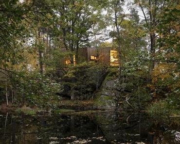 Heilung der Natur – Waldkabinen für Krankenhauspatienten