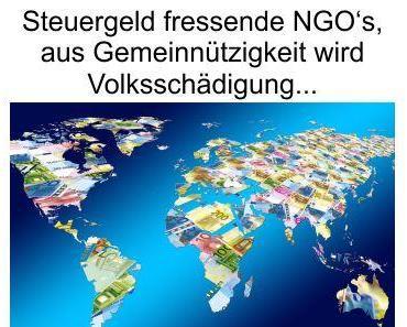 Die NGO's und die Gemeinnützigkeit