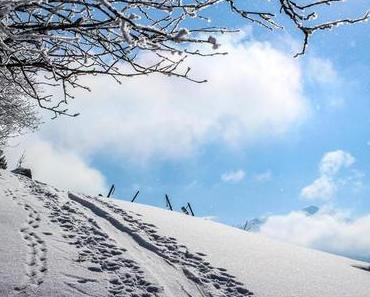 Skitour: Grenzgang am Kammerlinghorn
