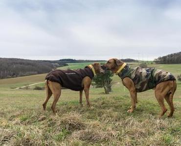 Luxuriös und kuschelig – die neuen Hundemäntel von RR Dog's Ware