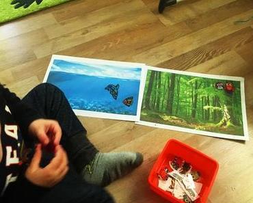 Sticker aufkleben auf Montessori-Art