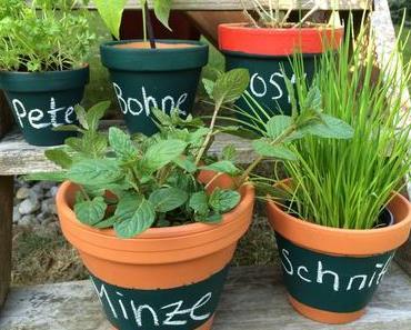 Schulstunde im Garten: Beschreibbare Töpfe für Kräuter