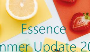 essence Sommer Update 2019