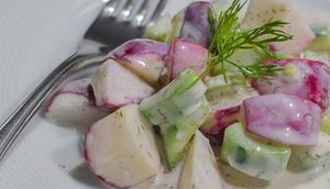 Radieschensalat Gurke Joghurtdressing
