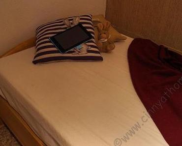 """Ist die Body-Star Classic line wirklich """"Die vielleicht Beste Matratze der Welt""""? #Bett #Schlafen #Wirhabenesprobiert"""