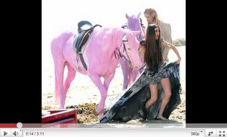 Wegen pinken Pferden: Pink verärgert über Selena Gomez