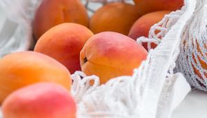Saisonrezept Juli Sommerlicher Aprikosensalat