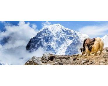 Everest Base Camp Trek: Wandern zur Mutter aller Basislager