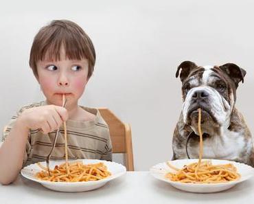 Diese Nährstoffe benötigt dein Hund