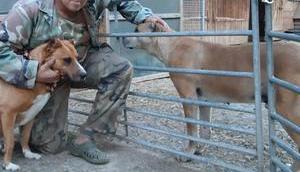 Sagt niemals nein Tieren Handicap haben