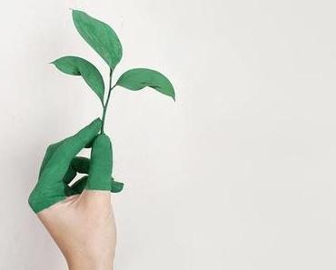 Grünes Marketing – Wie nachhaltiges Ökomarketing Erfolg und Umweltschutz verbindet