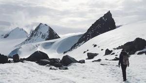 solltest wissen bevor Antarktis bereist!