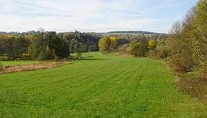 Grenzgebiet Thüringen/Franken Teil