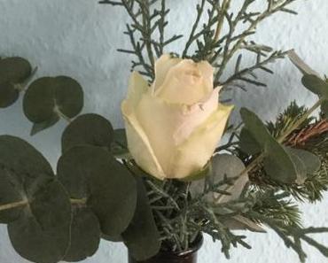 Weihnachtszeit bei Lilamalerie #20 – oder – Friday-Flowerday: Eine Rose kann schon sehr weihnachtlich sein