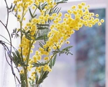 Friday-Flowerday 03/20