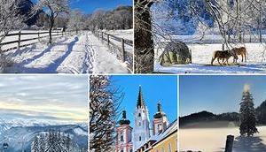 Jänner 2020 Impressionen Mariazellerland