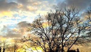 Foto: Winterlicher Sonnenaufgang
