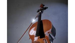 Lyrisches Cello: Vielleicht hier