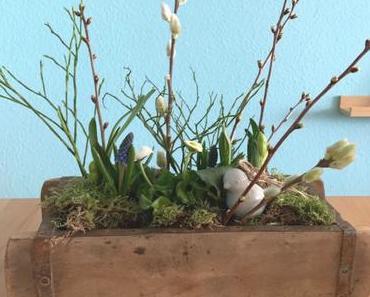 Friday-Flowerday – oder –  Frühling in der Kiste