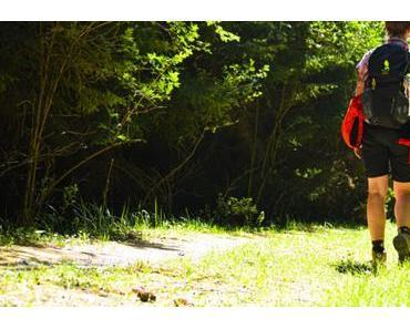 Auf dem Schinderhannespfad – Etappe 1 – Kastellaun – Simmern